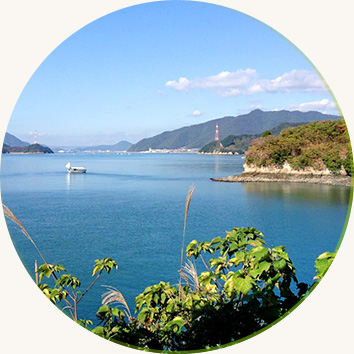 Wonders of the Shimanami Kaido